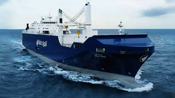 Shipping Line Agency